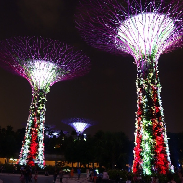 02-marzo_-gardens-by-the-bay-singapore